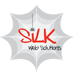 SiLK Web Solutions | Ottawa Web Design & Development